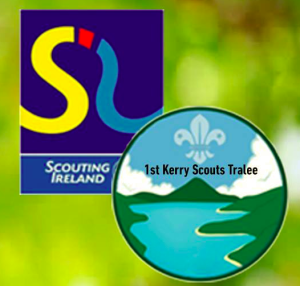 1st Kerry Scouts